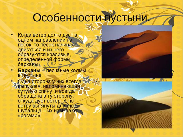Особенности пустыни. Когда ветер долго дует в одном направлении на песок, то...