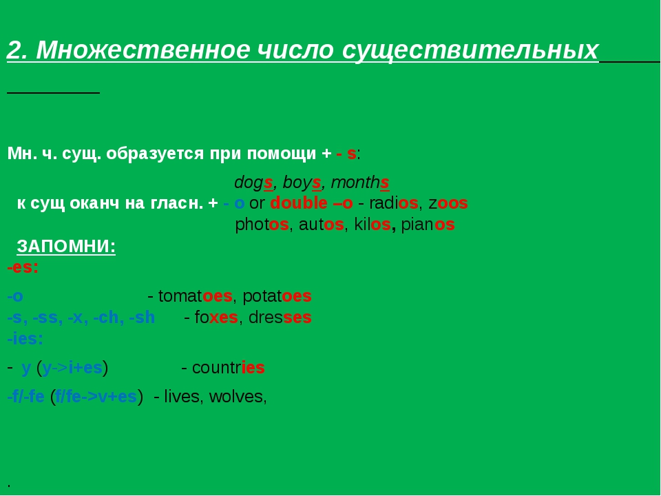 2. Множественное число существительных Мн. ч. сущ. образуется при помощи + -...