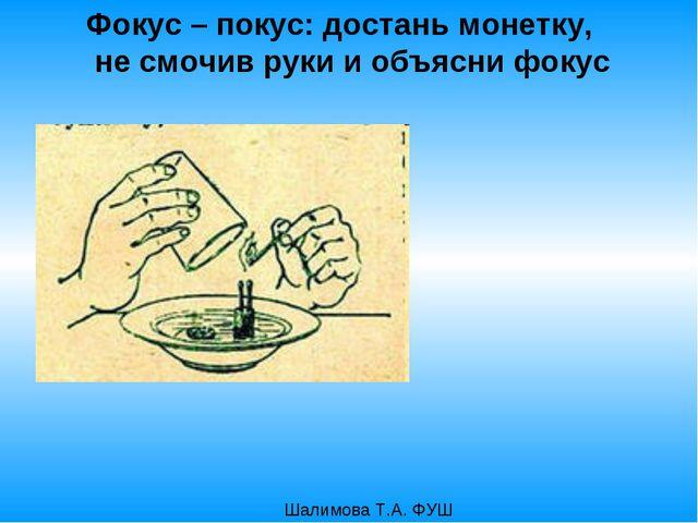 Фокус – покус: достань монетку, не смочив руки и объясни фокус Шалимова Т.А....