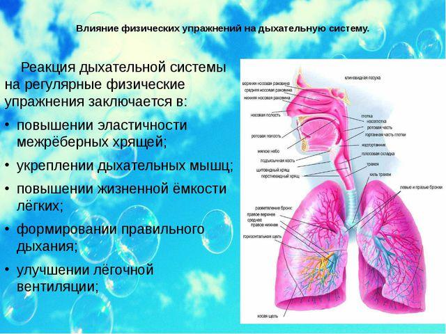 Влияние физических упражнений на дыхательную систему. Реакция дыхательной сис...