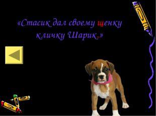 «Стасик дал своему щенку кличку Шарик.»