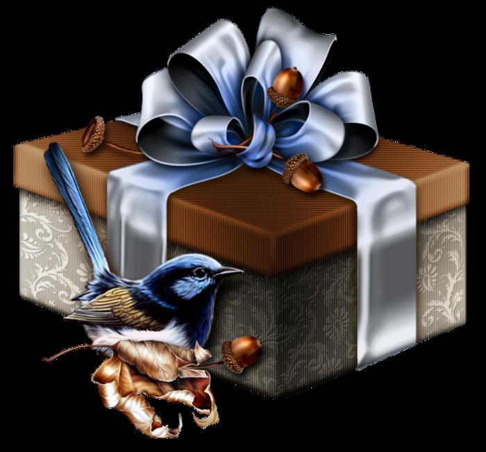Скачать Клипарт - Новогодний подарок бесплатно и без регистрации - Обои на рабочий стол на максимальной скорости с торрента