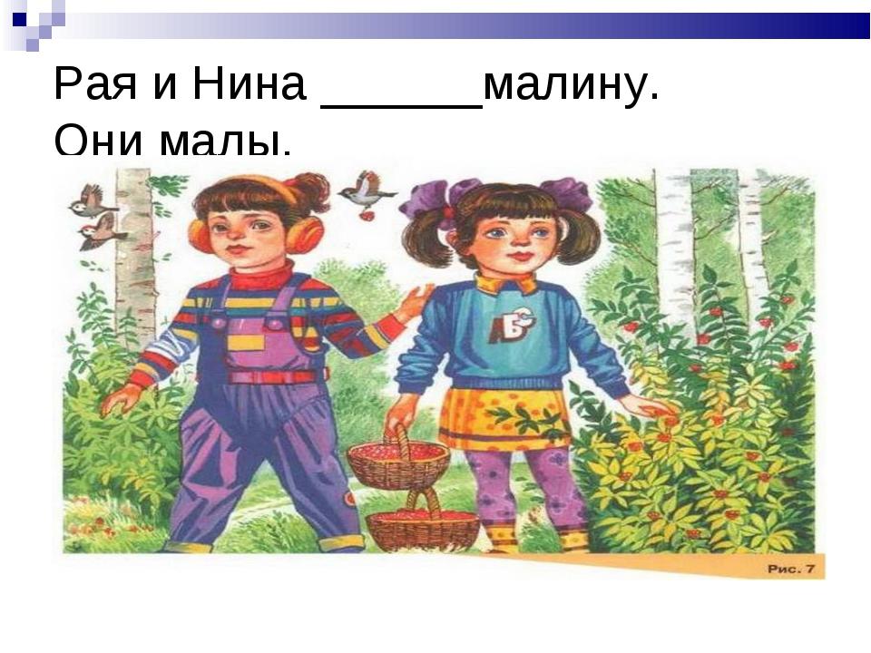 Рая и Нина ______малину. Они малы.