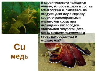 Жалящее действие крапивы, пчел и некоторых медуз связано с действием органиче