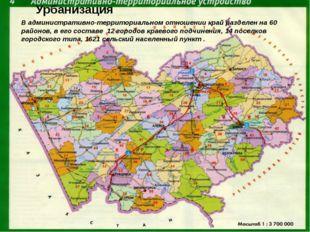 В административно-территориальном отношении край разделен на 60 районов, в е