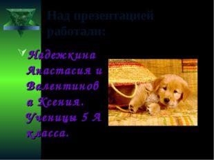 Над презентацией работали: Надежкина Анастасия и Валентинова Ксения. Ученицы