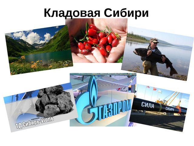 Кладовая Сибири