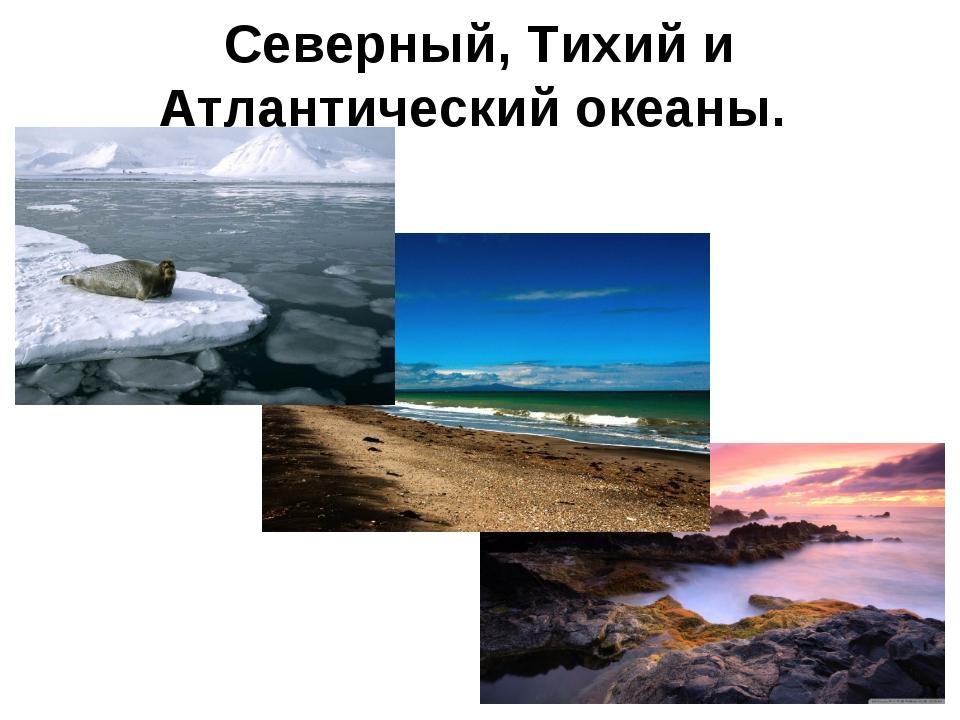 Северный, Тихий и Атлантический океаны.