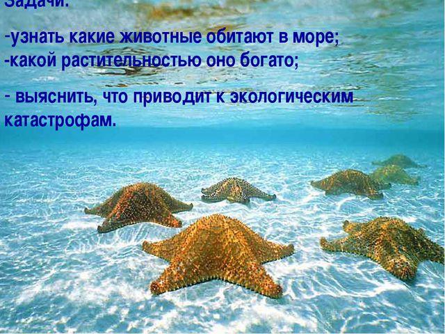 Задачи: узнать какие животные обитают в море; -какой растительностью оно бога...