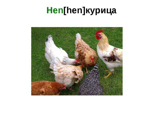 Hen[hen]курица