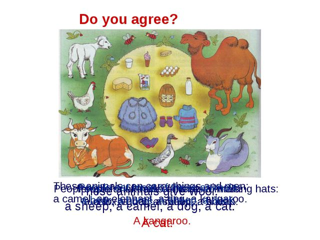 Do you agree? These animals give wool: a sheep, a camel, a dog, a cat. A cat....