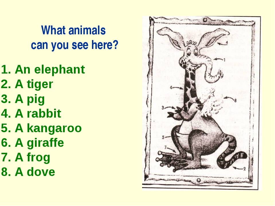 What animals can you see here? 1. An elephant 2. A tiger 3. A pig 4. A rabbit...