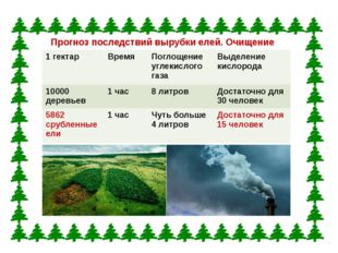 Прогноз последствий вырубки елей. Очищение воздуха. 1 гектар Время Поглощение
