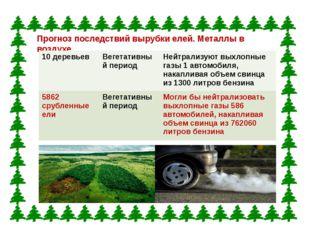 Прогноз последствий вырубки елей. Металлы в воздухе. 10 деревьев Вегетативный