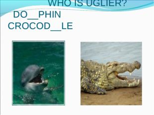 WHO IS UGLIER? DO__PHIN CROCOD__LE