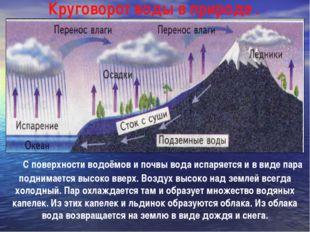 С поверхности водоёмов и почвы вода испаряется и в виде пара поднимается вы