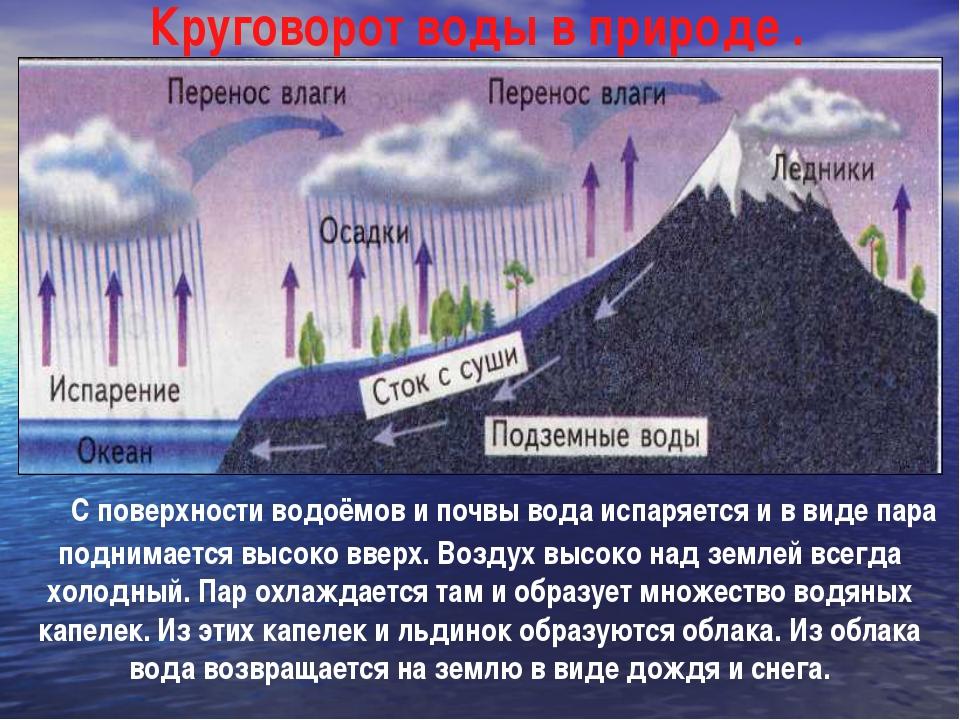 С поверхности водоёмов и почвы вода испаряется и в виде пара поднимается вы...