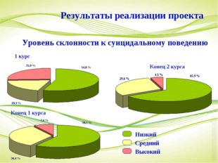 1 курс Конец 1 курса Конец 2 курса Результаты реализации проекта Уровень скло