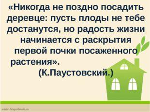 «Никогда не поздно посадить деревце: пусть плоды не тебе достанутся, но радос