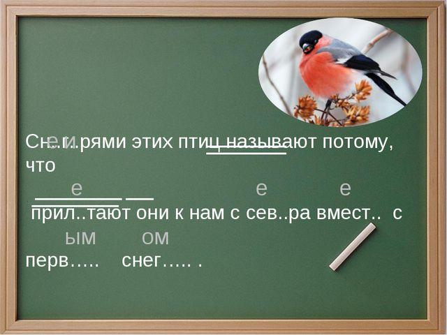 Сн..г..рями этих птиц называют потому, что прил..тают они к нам с сев..ра вме...