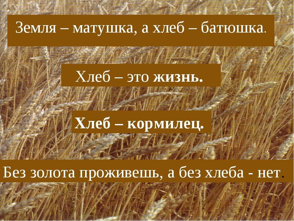 Земля – матушка, а хлеб – батюшка. Хлеб – это жизнь. Хлеб – кормилец. Без зол...