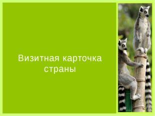 Визитная карточка страны Органы власти Парламентская республика, президент -