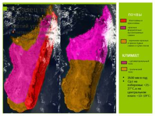 почвы - Желтозёмы и краснозёмы -красные феррапитные высокотравных саванн - ко