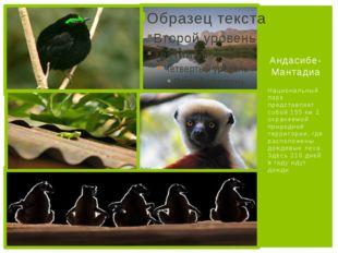 Национальный парк представляет собой 155 км 2 охраняемой природной территории