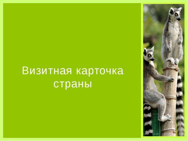 Визитная карточка страны Органы власти Парламентская республика, президент -...