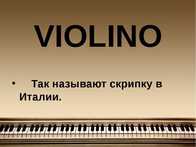 VIOLINО Так называют скрипку в Италии.