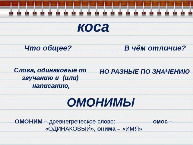 Что общее? В чём отличие? Слова, одинаковые по звучанию и (или) написанию, ОМ...