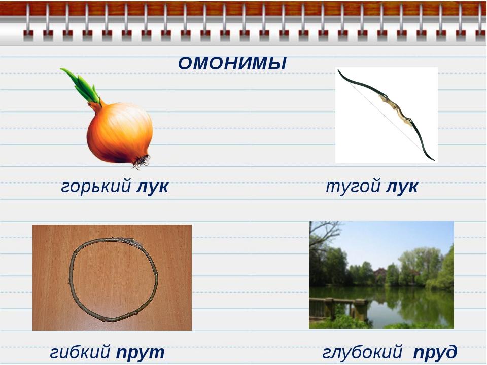 ОМОНИМЫ горький лук тугой лук гибкий прут глубокий пруд