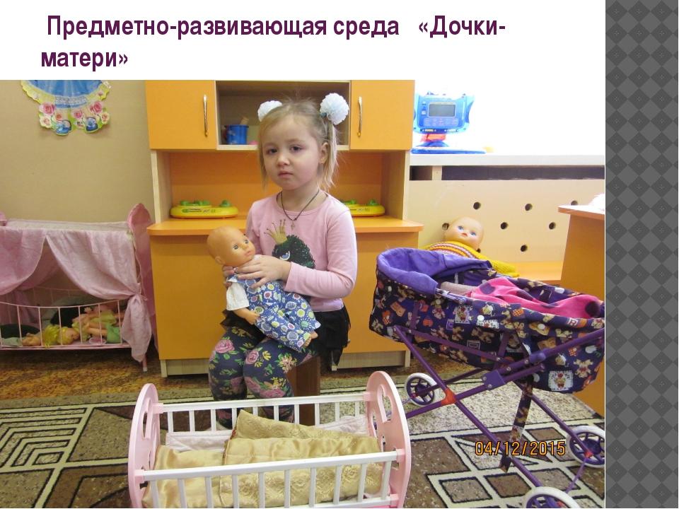 Предметно-развивающая среда «Дочки-матери»