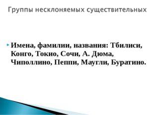Имена, фамилии, названия: Тбилиси, Конго, Токио, Сочи, А. Дюма, Чиполлино, П