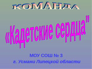 МОУ СОШ № 3 г. Усмани Липецкой области