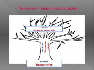 Технология «Генеалогическое дерево» проблема Зимующие птицы Причина Выпал сне