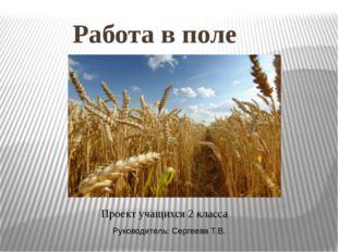 Работа в поле Проект учащихся 2 класса Руководитель: Сергеева Т.В.