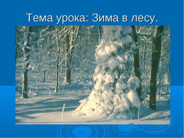 Тема урока: Зима в лесу.