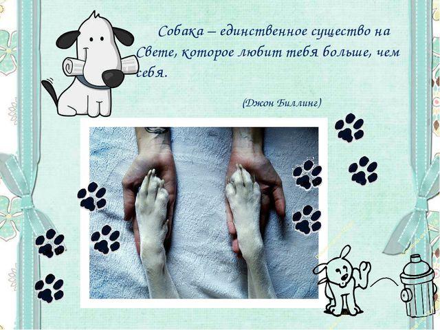 Собака – единственное существо на Свете, которое любит тебя больше, чем себя...