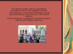 Ростовский зоопарк- один из крупнейших зоопарков в России, где содержатся бол