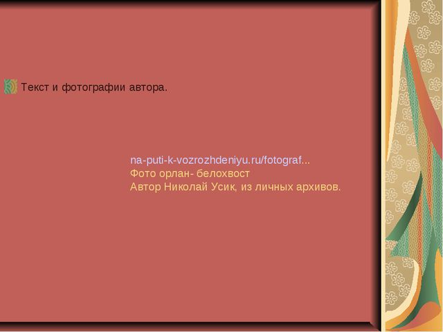 Текст и фотографии автора. na-puti-k-vozrozhdeniyu.ru/fotograf... Фото орлан-...