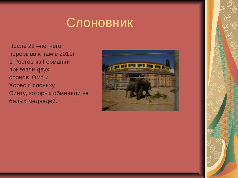 Слоновник После 22 –летнего перерыва к нам в 2011г в Ростов из Германии прив...