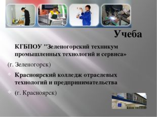 """Учеба КГБПОУ """"Зеленогорский техникум промышленных технологий и сервиса» (г. З"""