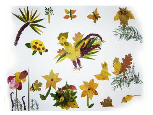 Гербарий на тему осень своими руками для детского сада - Shansel.ru