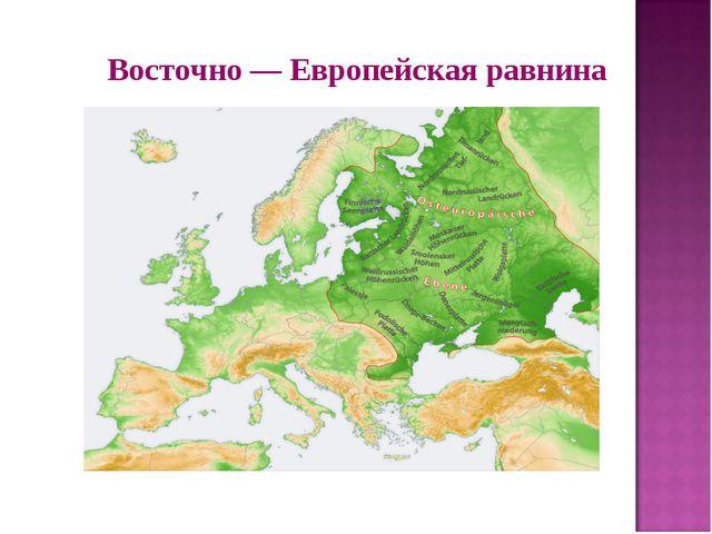 Восточно — Европейская равнина
