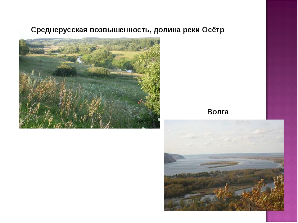 Среднерусская возвышенность, долина реки Осётр Волга