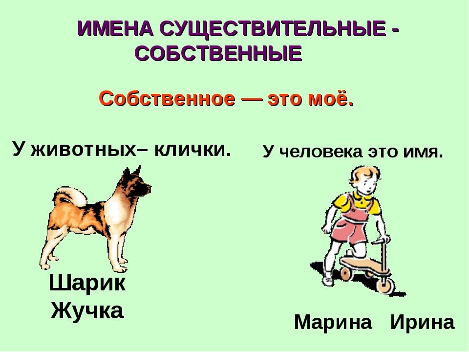 Собственное — это моё. У животных– клички. Шарик Жучка  У человека это имя...