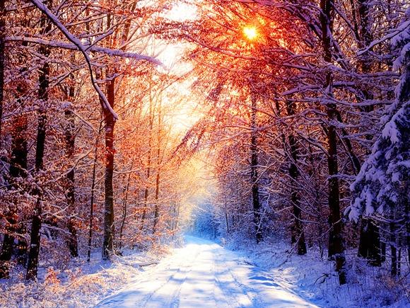 C:\Users\Светлана\Pictures\зима\з18.jpg