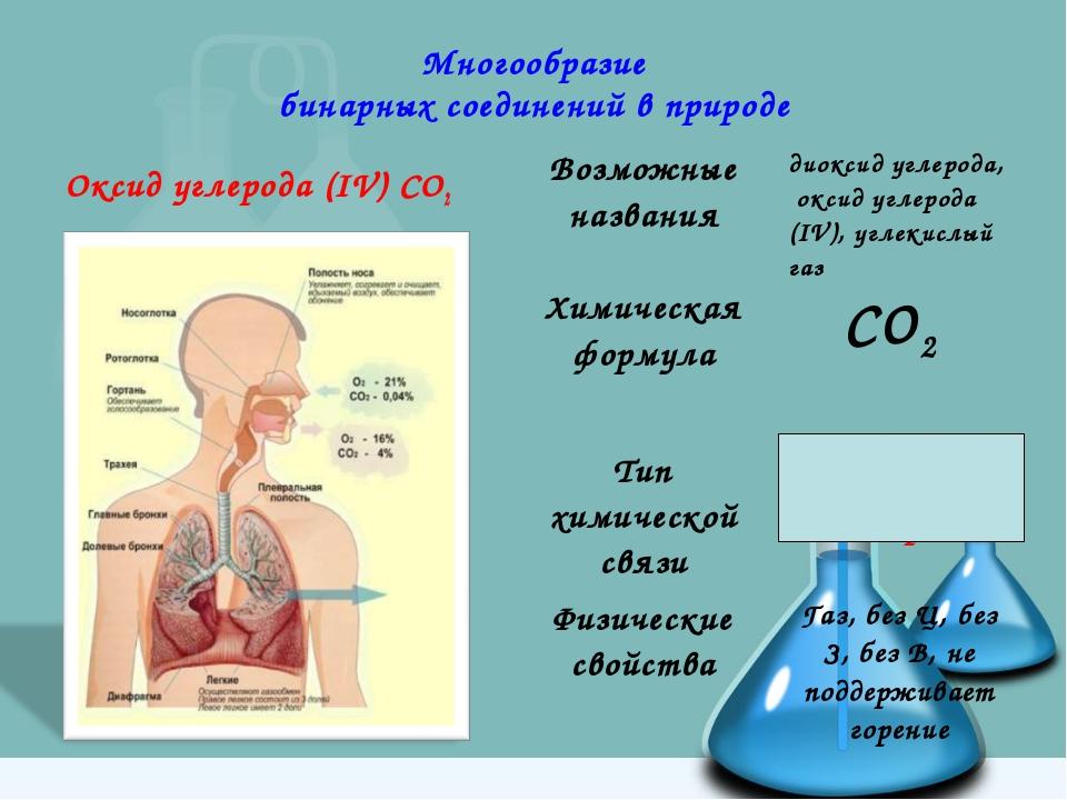 Многообразие бинарных соединений в природе Оксид углерода (IV) CO2 Возможные...