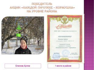 Елисеев Артем 1 место в районе